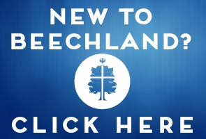 new to beechland